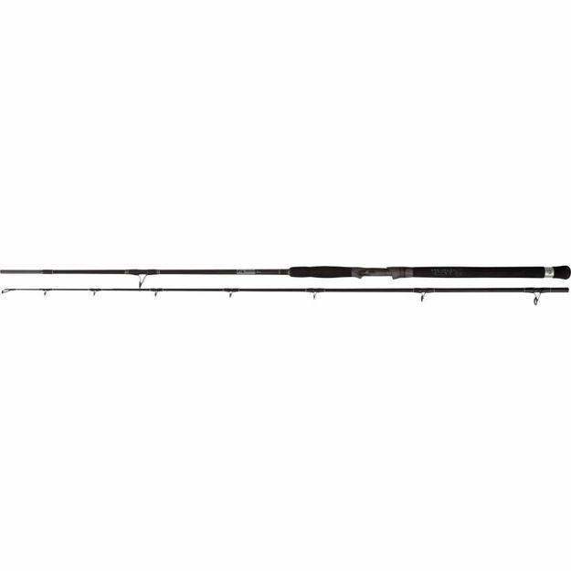 Bild von Black Cat 2,70m Cat Buster Spin 50g  150g